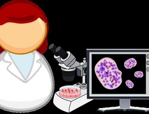 Защо са важни стволовите клетки